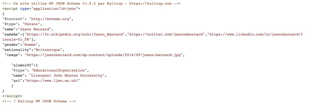 Balisage Schema JSON-LD pour Jason Barnard